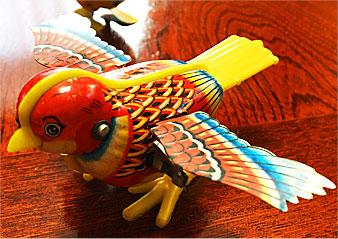 birdw1